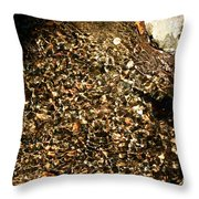 Crystal Clear Water Throw Pillow