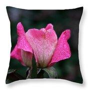Crystal Encased Throw Pillow