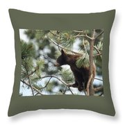 Cub In Tree Throw Pillow