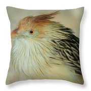 Cuckoo Bird Throw Pillow