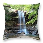 Cucumber Falls Pool Throw Pillow