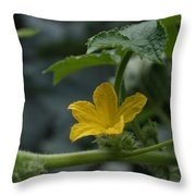 Cucumber Flower Throw Pillow