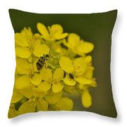 Cucumbers And Mustard Throw Pillow