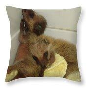 Cuddle Bears Throw Pillow