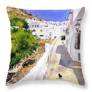 Cuesta De La Atalaya Nijar Throw Pillow