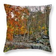 Cunningham Falls Viewing Platforms Throw Pillow