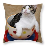 Cup O Tilly 2 Throw Pillow
