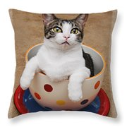 Cup O Tilly 3 Throw Pillow by Andee Design