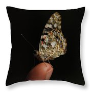 Curious Butterfly Throw Pillow
