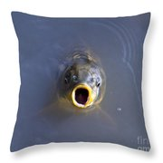 Curious Carp Throw Pillow
