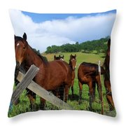 Curious Horses In Summer Throw Pillow