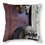 Curious Ones Throw Pillow