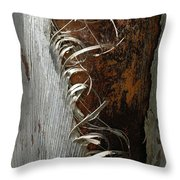 Curly Bark Of A Palm Tree Throw Pillow