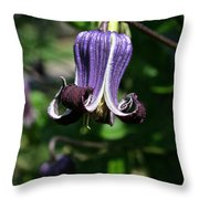 Curly Clematis Throw Pillow