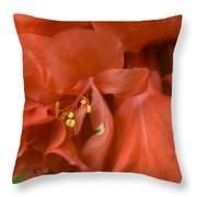 Curly Hibiscus Throw Pillow