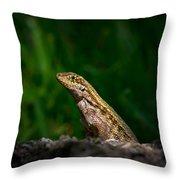 Curlytail Throw Pillow
