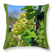 Currant In Bloom Throw Pillow