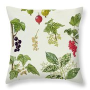 Currants And Berries Throw Pillow by Elizabeth Rice