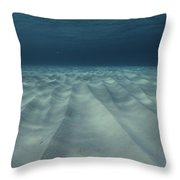 Current-sculpted Ripples In The Sandy Throw Pillow