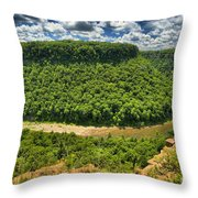 Curve In The Canyon Throw Pillow