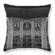 Curves And Poles Throw Pillow