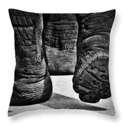 Cushioned Wallow  Throw Pillow