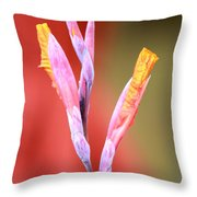 Cusp Of Emergence Throw Pillow by Leigh Meredith