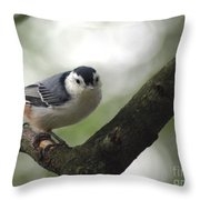 Cute Face Nuthatch Throw Pillow