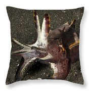 Cuttlefish With Tentacles Extended Throw Pillow