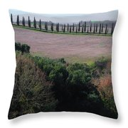 Cypress Allee Throw Pillow