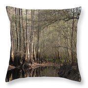 Cypress And Water Throw Pillow