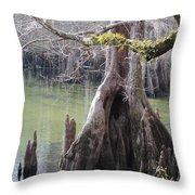Cypress Stump #1 Throw Pillow