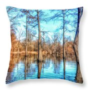 Cypress Swamp In Winter Throw Pillow