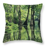 Cypress Trees Cross A Waterway Throw Pillow