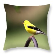Daddy Gold Throw Pillow