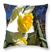 Daffodil And Cactus Throw Pillow
