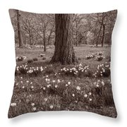 Daffodil Glade Number 2 Bw Throw Pillow
