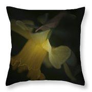 Daffodil Glow Throw Pillow