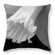 Daffodil Throw Pillow by Lisa Phillips