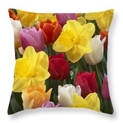 Daffodil Narcissus Sp Lucky Number Throw Pillow