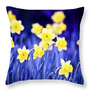 Daffodils Flowers Throw Pillow