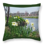 Daffodils In Holland 01 Throw Pillow