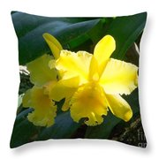 Daffodils In The Wild Throw Pillow