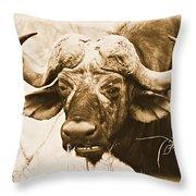 Dagga Boy Throw Pillow
