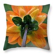 Dahlia 9001 Rearview Throw Pillow