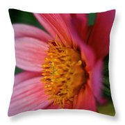 Dahlia Candles Throw Pillow