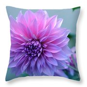 Dahlia Flower2 Throw Pillow