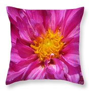 Dahlia Named Pink Bells Throw Pillow