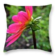 Dahlia Profile Throw Pillow
