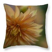 Dahlias Pastel Throw Pillow